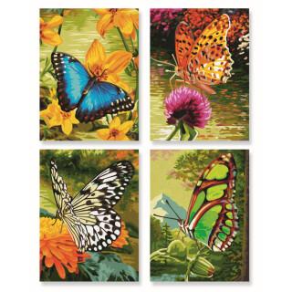 Schmetterlinge Malen Nach Zahlen Schipper 2949