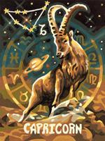 Tierkreiszeichen Steinbock